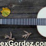 Alex-Gordez-Guitarist-11_1025x398